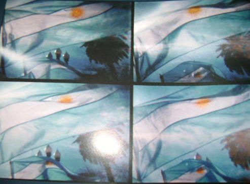 bandera zuviria